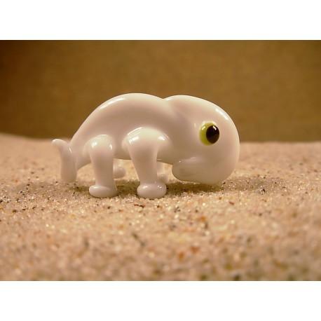 chameleon bílý