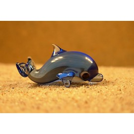 delfín safírový