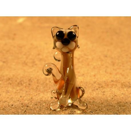 kočka - hnědá