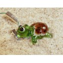 želva zelená P