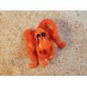 chobotnice oranžová