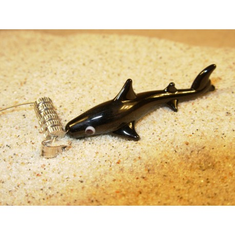 žralok černý