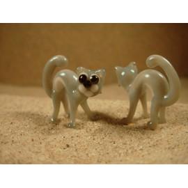 kočka prohnutá šedá
